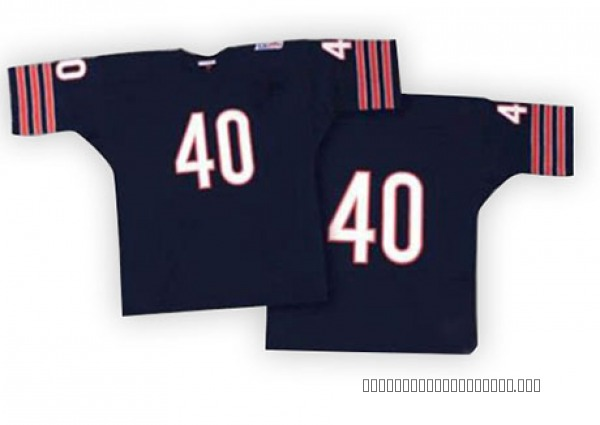 Gale Sayers Chicago Bears Authentic Blue Mitchell And Ness Team Color With Big Number Throwback Jersey